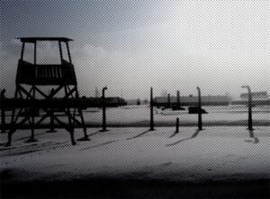Jedyny taki Niemiec w Auschwitz - rozmowa z Piotrem Ciwinskim