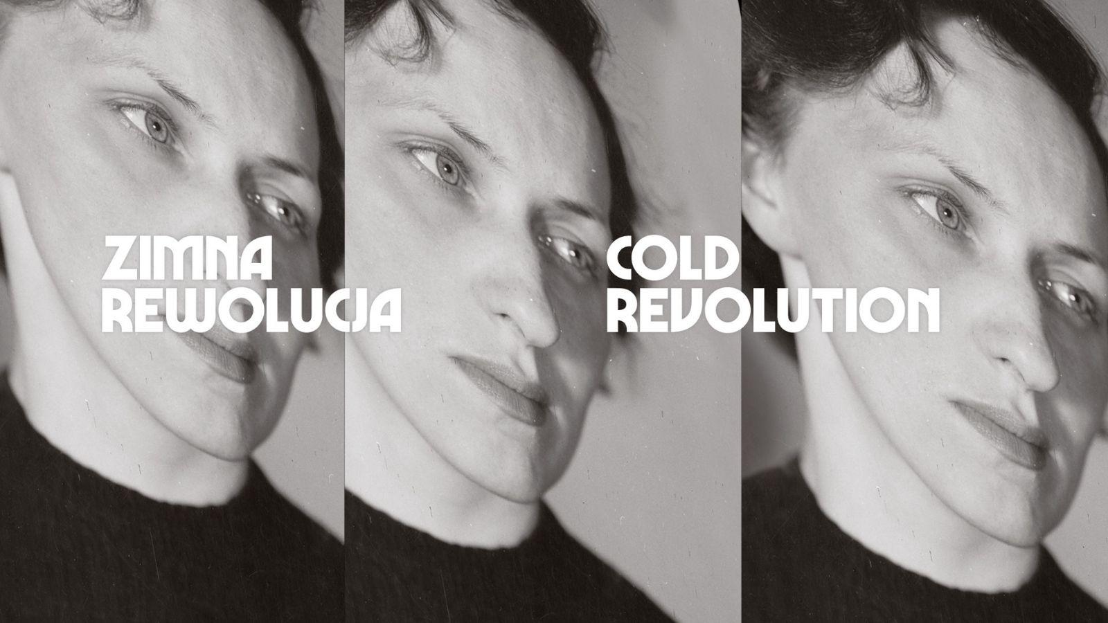Zimna rewolucja. Społeczeństwa Europy Środkowo-Wschodniej wobec socrealizmu, 1948–1959